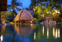 Piscina tropical Imágenes de archivo libres de regalías
