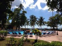 Piscina verde de Don Juan Boca Chica da flora da vegetação do hotel da viagem do hotel da palma três da República Dominicana fotografia de stock
