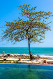 Piscina vicino alla spiaggia alla località di soggiorno di alta classe Fotografia Stock