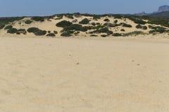 Piscinas beach in Sardinia Stock Images