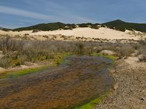 Piscinas, dune landscape at the Costa Verde, Sardinia Royalty Free Stock Photo