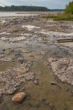 Piscinas fangosas de la marea Imagen de archivo libre de regalías
