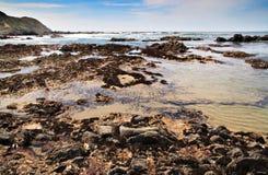 Piscinas granangulares de la marea Fotografía de archivo
