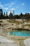 Piscinas minerales en Yellowstone Fotografía de archivo
