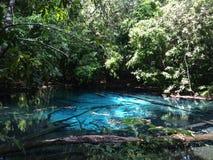 Piscine bleue Image libre de droits