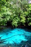 Piscine bleue célèbre dans la province de Krabi, Thaïlande Images libres de droits