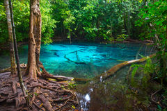 Piscine bleue dans la province de Krabi Photo stock