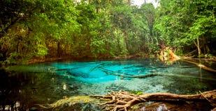 Piscine bleue de Sra Morakot à la province de Krabi, Thaïlande Image libre de droits