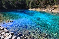 Piscine colorée (étang multicolore), Jiuzhaigou, au nord de province de Sichuan, la Chine Images stock