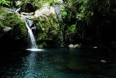 Piscine d'eau fraîche de la vue tellement gentille de nature image stock