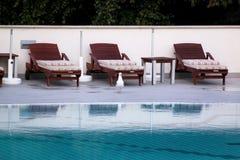 Piscine de l'hôtel de luxe de vacances, de la vue stupéfiante et de la scène de la mouette seul appréciant Détendez près de la pi photo stock
