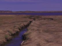 Piscine de marée 3486 de ruisseau photo libre de droits