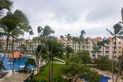 Piscine et palmiers tropicaux dans l'hôtel Image libre de droits