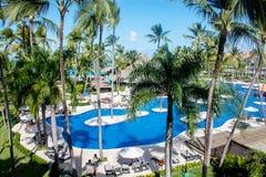 Piscine et palmiers tropicaux dans l'hôtel Photo libre de droits