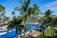 Piscine et palmiers tropicaux dans l'hôtel Photographie stock