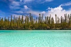 Piscine naturelle de la baie d'Oro, île des pins Images libres de droits