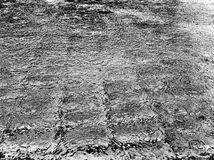 Piscine pluvieuse Photos libres de droits