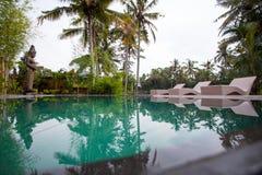 Piscine sur un fond des palmiers et des lits pliants Image stock
