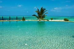 Piscine tropicale de luxe Image stock