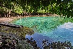 Piscine verte chez Krabi Thaïlande Image libre de droits