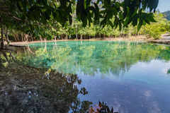 Piscine verte chez Krabi Thaïlande Photo stock