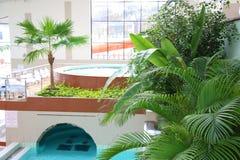 Piscines d'intérieur et jacuzzi avec la végétation tropicale Photographie stock libre de droits