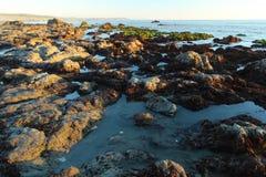 Piscines rocheuses de marée dans San Simeon, la Californie, près du château de Hearst, les Etats-Unis Photos stock