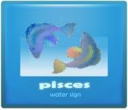 Piscis Foto de archivo libre de regalías