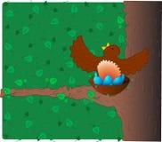 Pisco de peito vermelho na árvore Fotografia de Stock