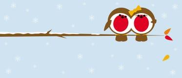 Piscos de peito vermelho do Natal no ramo Imagens de Stock Royalty Free