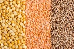 Piselli, lenticchie e grano saraceno tagliuzzati Fotografia Stock