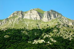 piselli monte Стоковые Фотографии RF