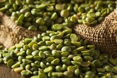 Piselli secchi rotti verdi organici crudi Fotografie Stock Libere da Diritti