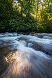 Pisgah Cascade Royalty Free Stock Photo