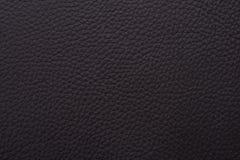 piska naturlig textur Arkivfoton