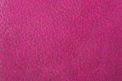 piska rosa textur Arkivfoto