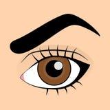 piskar den falska humanen för det bruna ögat eyeliner stock illustrationer