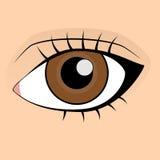 piskar den falska humanen för det bruna ögat eyeliner royaltyfri illustrationer