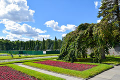 Piskaryovskoye memorial cemetery in Leningrad Stock Images