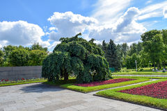 Piskaryovskoye memorial cemetery in Leningrad.  Royalty Free Stock Photography