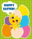 pisklęcy Easter Fotografia Royalty Free