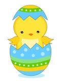pisklęcy Easter Zdjęcia Stock