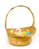 pisklęta dziecka Wielkanoc koszykowi jajka z tworzyw sztucznych Obrazy Royalty Free