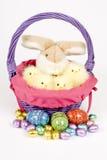 pisklęta Wielkanoc jego królików Obrazy Stock