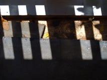 Piso concreto, ventana a través de la sombra de la sombra de la luz del sol Fotografía de archivo