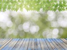Piso de madera con el marco verde de la hoja en fondo de la naturaleza Imagen de archivo libre de regalías
