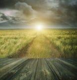 Piso de madera con una trayectoria de la pradera en fondo Imagen de archivo libre de regalías