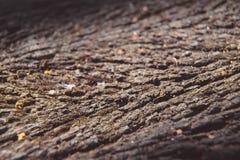 Piso de madera del viejo decaimiento, fondo Macro Fotos de archivo