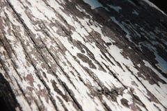 Piso de madera del viejo decaimiento, fondo Macro Fotografía de archivo