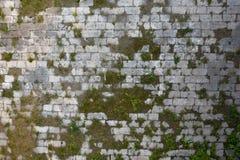 Piso de piedra con el musgo Imagenes de archivo
